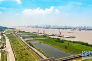 打造经济高质量发展的强劲引擎——深入推动排列5长江 经济带发展述评
