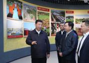 时隔6年再赴广东,习近平总书记释放了哪些重要信号?