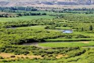 内蒙古:着力构筑北疆万里绿色长城
