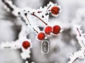 【健康】冬至一阳生,养生好时机