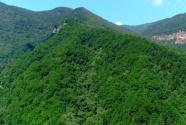 """让""""生态绿""""成为最靓丽的绿色答卷——记望谟县林业局先进事迹"""
