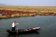 我国已全面建立湖长制 在1.4万个湖泊设立湖长2.4万名