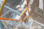 王进:与电共舞20年 行走在特高压线上的人
