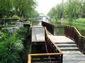 """沉甸甸的""""绿色获得感""""——植树节探访北京家门口的小公园"""