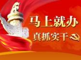 荆州加强农村基层党组织建设