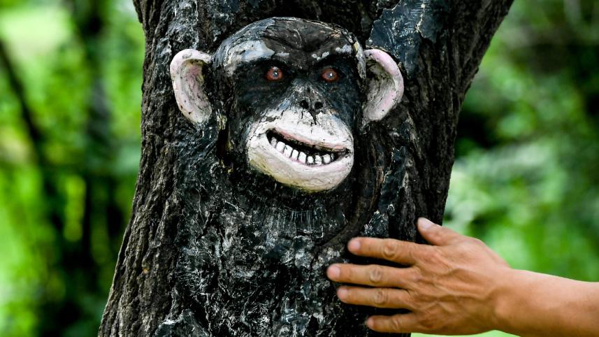 吉林長春:動植物園里看樹雕畫