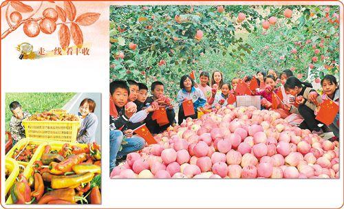 http://www.feizekeji.com/chanjing/210580.html