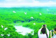 以马克思主义生态观引领美丽中国建设