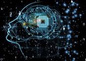 """當機器有了""""大腦""""——來自進博會的一線觀察之智造篇"""