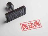 """民法典承载""""中国之治""""制度结晶 生命力在于实施"""