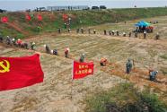 南昌三千民兵打响百万亩粮田保卫战