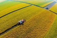 强农惠农政策落实 农业经济稳中有升