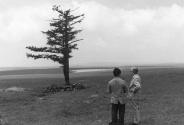 红色旅游正青春︱绿色塞罕坝,不朽的奇迹