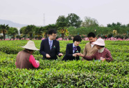 郵儲銀行湖北省分行:振興藍圖繪到底 美麗鄉村入畫來